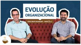 Série Grupo Baumgart  1 de 3  Evolução organizacional